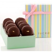 Chocolate Covered Macaroon Collection, 8 piece