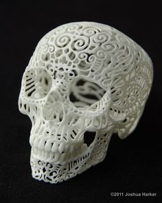 Skull Sculpture Crania Anatomica Filigre mini by shhark on Etsy, $65.00.... I really want this.
