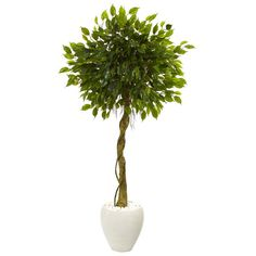 Nearly Natural Green Artificial Ficus Trees at Lowe's. Roots wrap around a natural-looking trunk with this detailed artificial Ficus tree topped with lush, carefully made green foliage. Planted in an