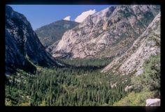 Sequioa/Kings Canyon NP
