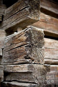 Frank Tschakert, Old Wood