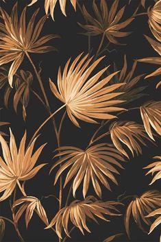 Va Va Frome Noir Black Wallpaper by Pearl Lowe - Modern Palm Leaf Wallpaper, Botanical Wallpaper, Unique Wallpaper, Black Wallpaper, Flower Wallpaper, Wall Wallpaper, Pattern Wallpaper, Pearl Lowe, Wisteria Plant