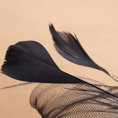 Bride Women Dot Black White Feather Mesh Fascinator Wedding Party Headpieces is cheap, see other hair accessories on NewChic. Wedding Events, Wedding Decor, White Feathers, Headpieces, Fascinator, Dots, Mesh, Hair Accessories, Bride