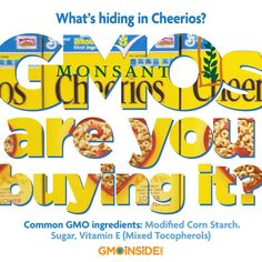 #GMO : Are you buying it? Common GMO ingredients