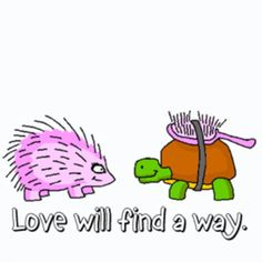 my two fav animals, hedgehog and turtle