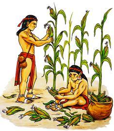Ancient Aztecs, Ancient History, Inca Art, Aztec Drawing, Aboriginal Man, Maya Civilization, Indigenous Tribes, Man Illustration, Aztec Art