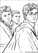 70 best Harry Potter: Coloring Pages images on Pinterest | Coloring ...