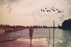 bird & sea