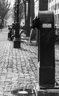 Torino fontane