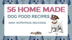 Make these easy and nutritious dog food recipes yourself. Your pet will thank you!
