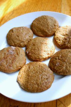 Beyond the Bite: Chewy Cinnamon Sugar Cookies (AIP-friendly)   gr-yel plantain, water chestnut flour (Singoda)