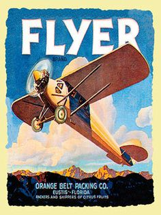 Flyer Metal Sign, Vintage Airplane, Gameroom Decor, Florida, Mountains, Travel