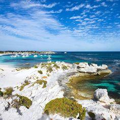 Essa ilha chamada Rottnest pelos australianos e Wadjemup pela população local Noongar é um lugar muito conhecido para turismo no oeste da Austrália a poucas dezenas de quilômetros de Perth a maior cidade da região. É um parque nacional preservado com lagos salgados e uma grande população de pássaros. As praias são lindas. Uma prova do sucesso que faz entre os viajantes são os 500 mil turistas que recebe por ano. Nada mal para uma ilha que tem apenas cem habitantes. #rottnest #rottnestisland…