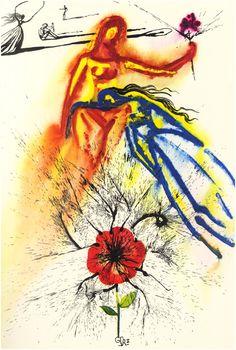 Alice aux pays des merveilles par Salvador Dali ( Alice in wonderland by Salvador Dali ).