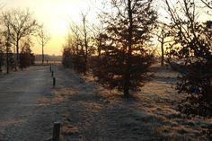 Een zonnige ochtend op Landgoed de Biestheuvel