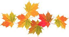 осенние листья летят: 19 тыс изображений найдено в Яндекс.Картинках