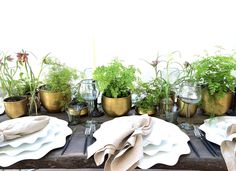 A green garden party table