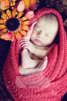 Love the idea of a newborn photos shoot but representing the season in which… Fall Newborn Pictures, Baby Girl Photos, Newborn Shoot, Baby Girl Newborn, Baby Baby, Fall Newborn Photography, Family Photography, Newborn Fotografie, Girl Photo Shoots