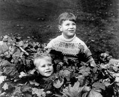 Boisterous brothers: Six-year-old Andrew tries to bury Edward in leaves in the grounds of Buckingham Palace