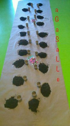 Montessori, Learning, Activities, Art For Kids, Kid Games, Vegetable Gardening, Spaces, Spring