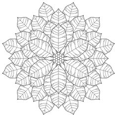 Because it is radially symmetrical and poinsettias aren't. I think it was the birch leaves that made the idea of a poinsettia coloring page stick in my mind. They look so cheerful and flowery with their brightly colored bracts.