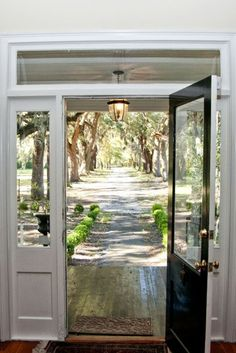 Long, tree-lined driveway....  strung with those asian lanterns..