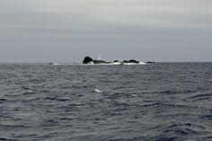 SIARAM :: Zonas Húmidas :: Formigas Islets, Santa Maria Island, #Azores, #Portugal