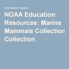 NOAA Education Resources: Marine Mammals Collection
