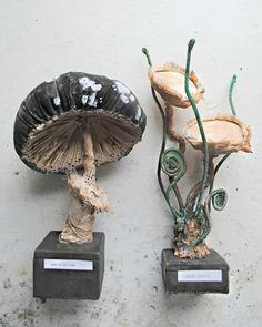 Ce talentueux artiste,Mister Finch, confectionne des sculptures animalières grâce à de vieux sacs en toiles, des tapisseries abandonnées et autres textiles abîmés par le temps. Ainsi, il redonne vie à d'ancien textile sous forme de papillons, d'oiseaux, de champignons, etc. Sur le bateau, on aime ! Tweet