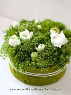 Compact – Avant-Garde Floral Design: