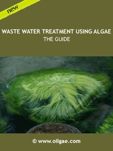 Great source for Algae Wastewater Treatment Systems. Bioremediation provides a sustainable solution for the treatment of industrial and municipal wastewater, a critical pain point being faced by industries and municipalities worldwide. This report is an indispensable tool for those keen on understanding this industry in-depth, either for research or for implementation.