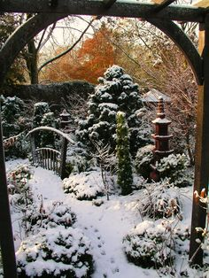 Winter in the lower garden / Walsall, England