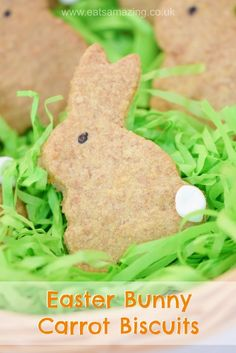 Easter Bunny Carrot Biscuits Recipe - easy and fun project for kids to make this Easter : Easter Bunny Carrot Biscuits Recipe - easy and fun project for kids to make this Easter Easter Recipes, Baby Food Recipes, Egg Recipes, Picnic Recipes, Baking Recipes, Snack Recipes, Easy Biscuit Recipe, Easter Biscuits, Fun Projects For Kids