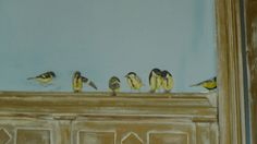 oiseaux. www.manoir-a-tarare.fr