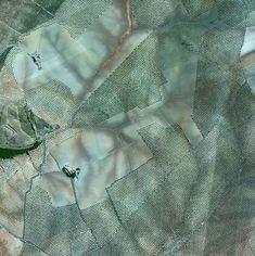 Olive tree groves in Cordoba, Spain, from Overview by Benjamin Grant Drones, Earth Photos, Earth From Space, Olive Tree, Human Condition, New Perspective, Aerial Photography, Space Photography, Spain