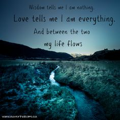 Wisdom tells me I am nothing. Love tells me I am everything. And between the two My life flows - Nisargadatta Maharaj