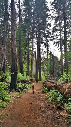#naked #forestnymph #yosemite