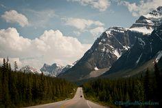 long drives along mountains - Google Search