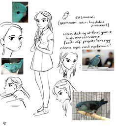 just brainstorming some things…  for fun, i wanted to make a cute ~badminton bird anime~, haha. i love sports anime and i wanted to doodle my own! if you can't tell, i love birds (a lot!) so i tried to incorporate certain species' temperaments into their human counterparts.  birds and sports. badminton? birdminton!  here are the main girls so far.