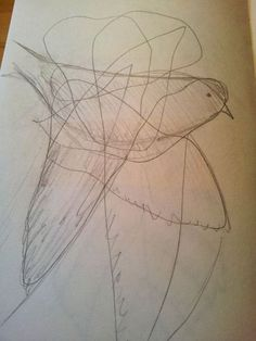 Kritzelvogel - scribbled bird