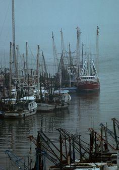 shrimp boats Texas