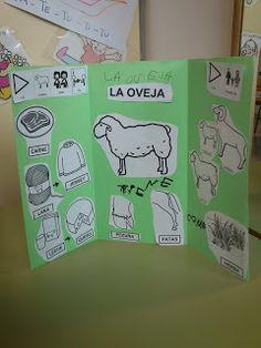 Lapbook de l'ovella                                                                                                                                                                                 Más