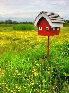 birdbarn in a meadow ~ Terra Nova, Richmond, BC