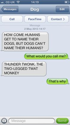 Just funny. A text from a dog!