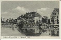 AK Roitzsch (Kr. Bitterfeld) Partie am Teich