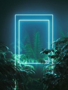 Neon wedding inspiration and decor for Magpie Wedding Photo Background Images, Photo Backgrounds, Wallpaper Backgrounds, Editing Background, Iphone Wallpaper, Neon Light Wallpaper, Black Wallpaper, Motif Jungle, Framed Wallpaper