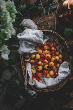 Lemon Cherry Elderflower Vegan Scones | TermiNatetor Kitchen