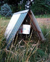 A pasture shelter can be as simple as an open-ended A-frame. One option for ensuring stability in the wind is suspension of 5-gallon buckets inside the shelter: Fill with water to anchor against the wind, empty when ready to move the shelter.