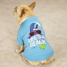 Note : If the dog has a stout build, select one size larger. Screen-printed design with bold white lettering. Beach T Shirts, Tee Shirts, Pet Friendly Hotels, Dog Beach, Pet Clothes, Dog Supplies, Dog Friends, Blue Tops, Dogs And Puppies