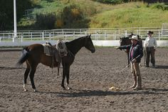 Clearing out the front quarters With Buck Brannaman: photos by Emily Kitching There are two parts to groundwork; safety and refinement. The safety part is where you are working on having your horse to where he is relaxed enough so that when you get on you can have good things going on between you. The second part is building a …